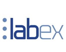 LabEx Logo