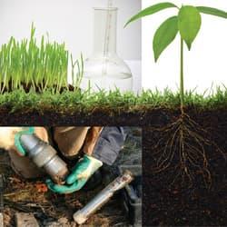 LIBS Analysis in Soil